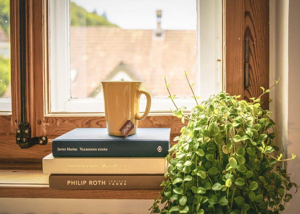Quali sono le piante che purificano l'aria