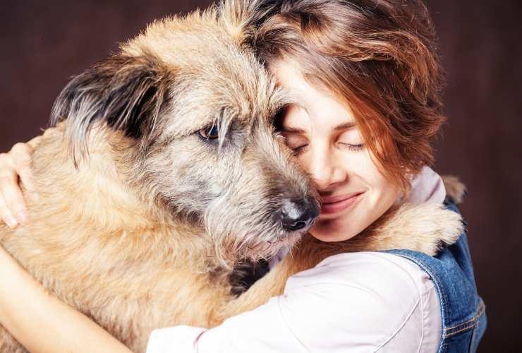 Abbracciare il cane-cose da non fare-SoloNotizie24.it