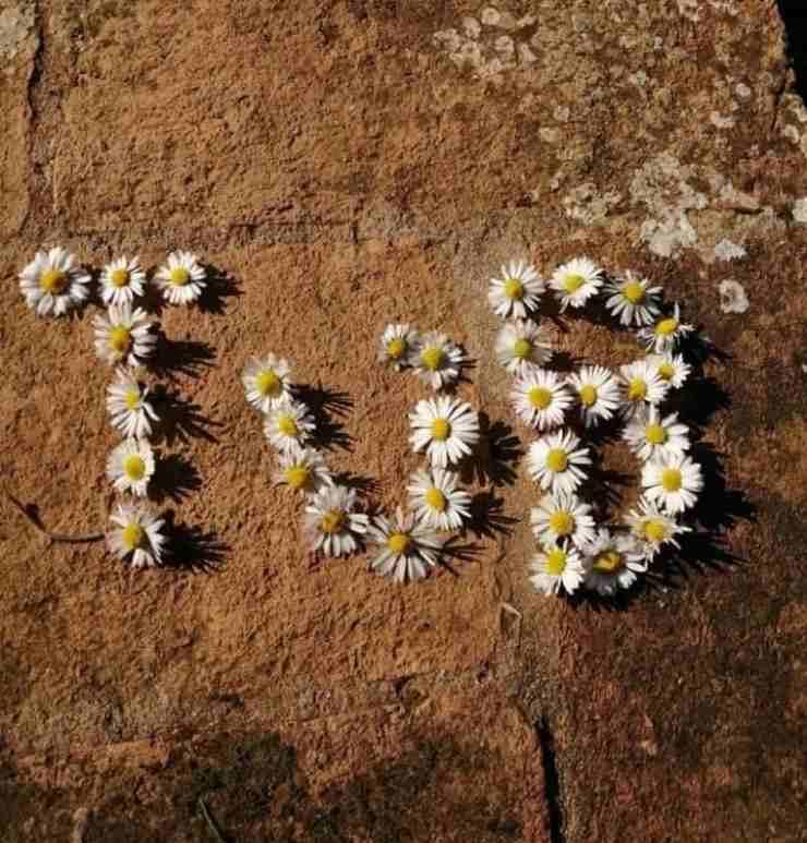 La dolce dedica - Solonotizie24